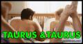 Kecocokan Zodiak Taurus dan Taurus